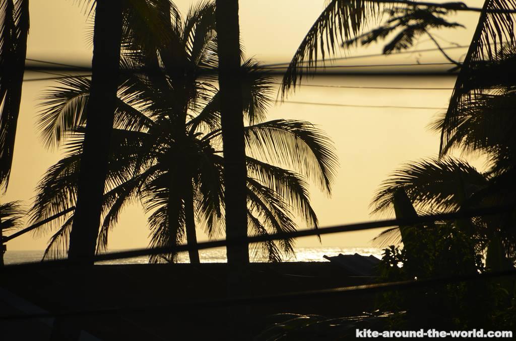 Sonnenuntergang Palme